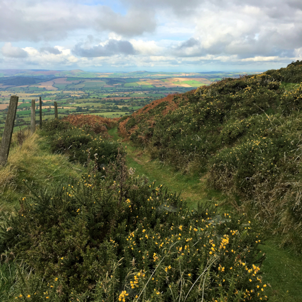 Walking the Shropshire Hills